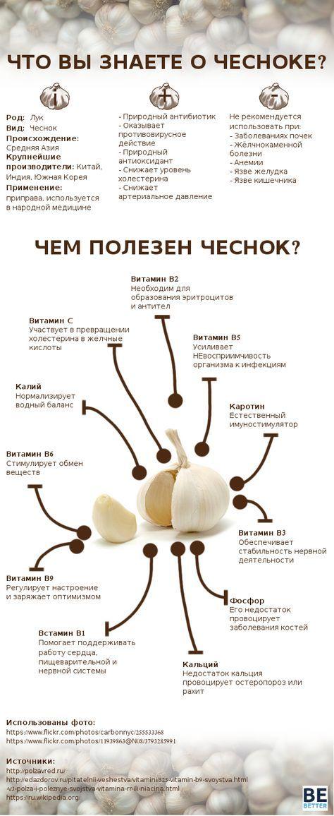 Письмо «Мы нашли новые Пины для вашей доски «кулинария».» — Pinterest — Яндекс.Почта