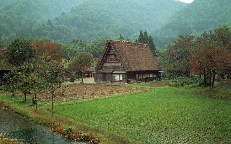 japanese_house_in_a_valley_with_a_steep_roof.2560x1600.8fa5a4b7.jpg (2560×1600)