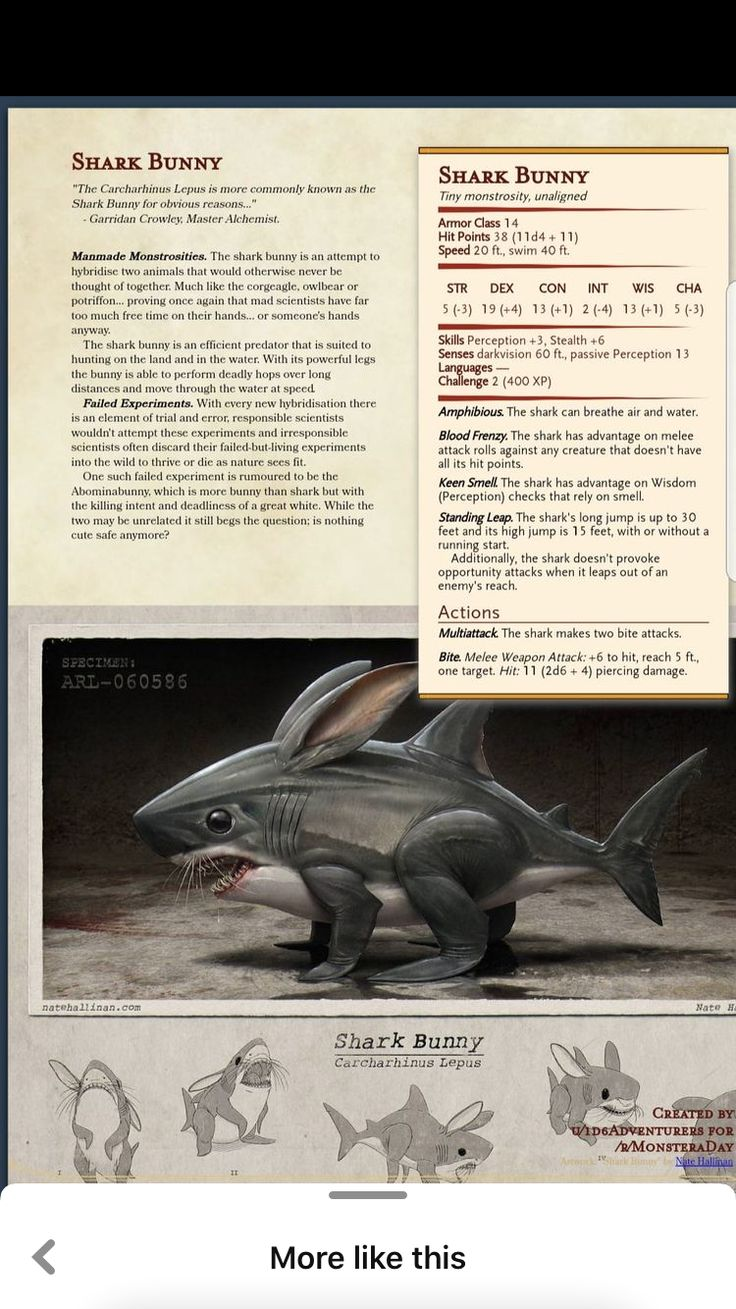 Pin by Z on Dnd 5e homebrew in 2020 Dnd dragons
