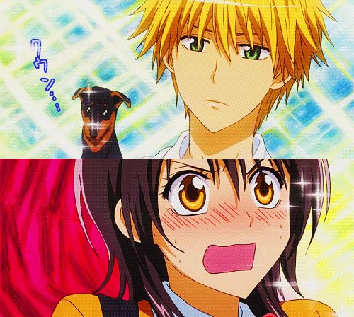 Usui puppy style, even Misaki couldnt resist