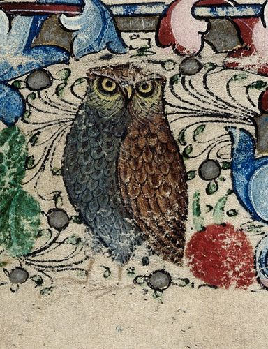 Owl - British Library Harley 2887 ~The owl most often represents knowledge, but also represents Minerva, the goddess of war.