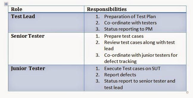 Roles And Responsibilities  Software Testing