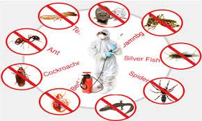 Pest control in business distribution centers is a major test for most pest control organizations. Different sorts of bugs, creatures, and creepy crawlies can torment your distribution center.   thirstypestcontrol.blog.com/2015/11/23/how-to-do-pest-control-in-warehouse/