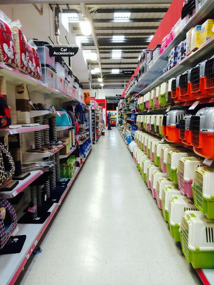 The Pet Hut Pet Shop Pound Stretcher Value Retail Layout Visual Mercha Vitrine De Pet Shop Pet Shop Layout