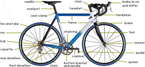bike parts diagram | the anatomy of objects | Pinterest | Bicycling
