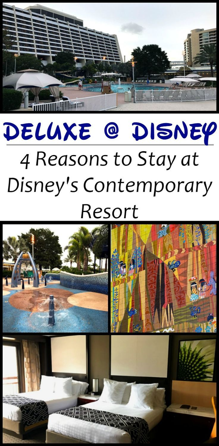 Are Disney's deluxe hotels really worth their price? Find out my 4 reasons why I think Disney's Contemporary Resort is absolutely worth the splurge!