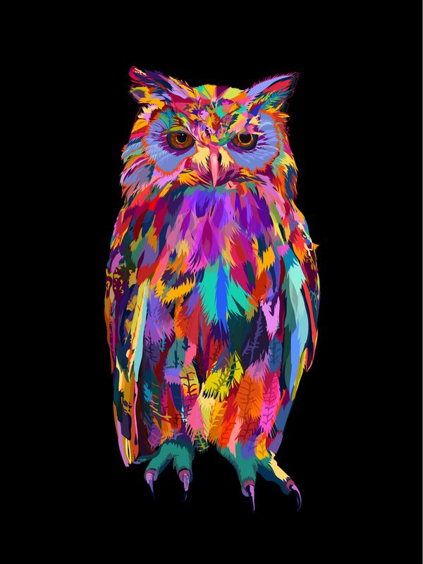 25 best ideas about owl paintings on pinterest 3 canvas for Night owl paint color