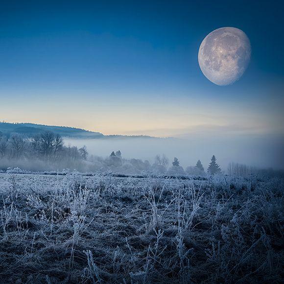 Ensam är stark, men tillsammans är vi starkare! På måndag den 22 februari är det fullmåne. Låt oss skicka kärleksfulla tankar och energier!