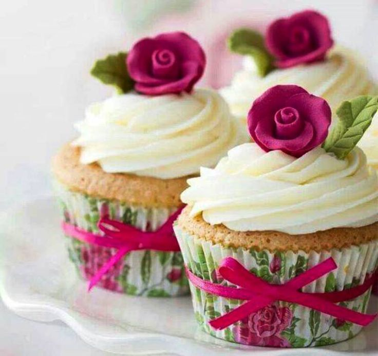 Pretty little cup cakes