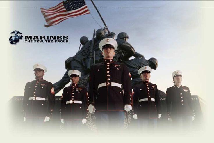 USMC - Marines - Devil Dogs