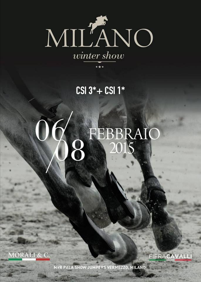 Milano Winter Show, 6-8 febbraio 2015, MVR Pala Show Jumpers Vermezzo. #horses #horse #riding #cavalli #fieracavalli