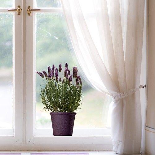 27 best images about la deco pour les vitres on pinterest for Decoration fenetre electrostatique