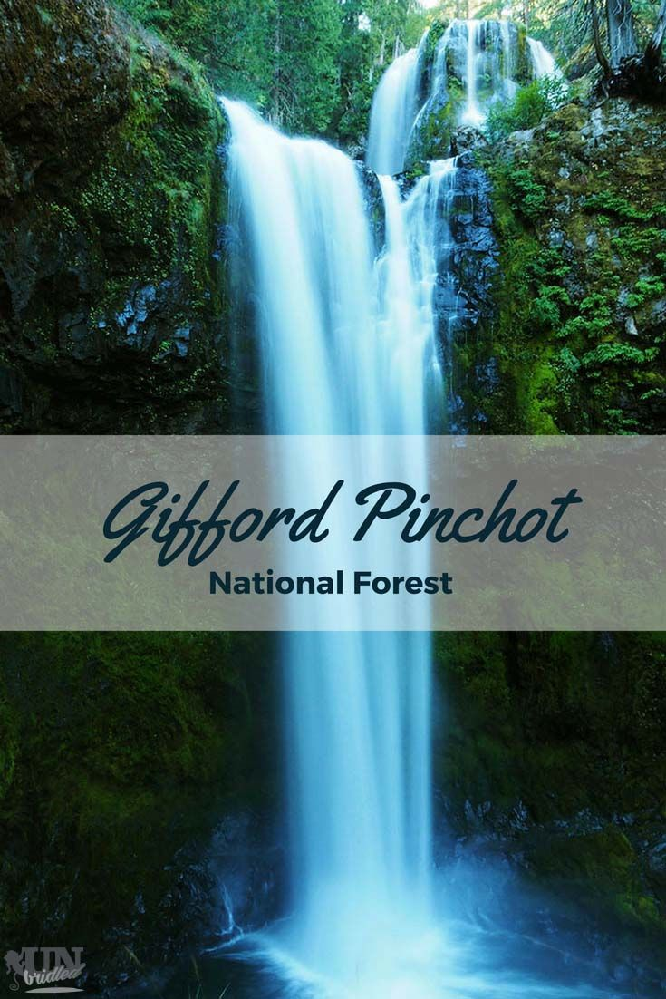 Waterfalls everywhere - Gifford Pinchot National Forest will put the adventurer-spell on you.