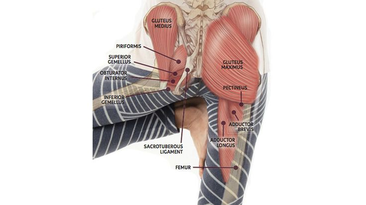 Learn some tips from Ray Long, MD about balance mobility and stability in your hip joints.