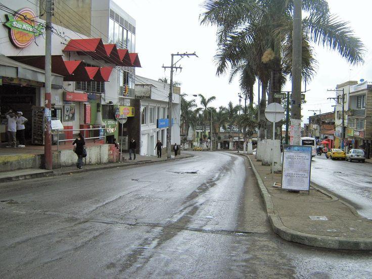Avenida de las palmas fusagasugá