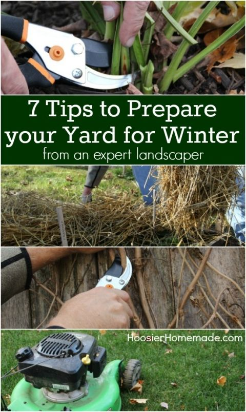 Feel the chill setting in? Prep your yard for winter with these 7 tips from Hoosier Homemade. Click in for more information.