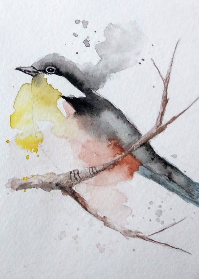 Progressons Ensemble A L Aquarelle En 2020 Oiseau D Aquarelle