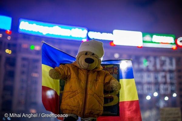 'Bear with us'. 03/02/2017 © Mihai Anghel / Greenpeace