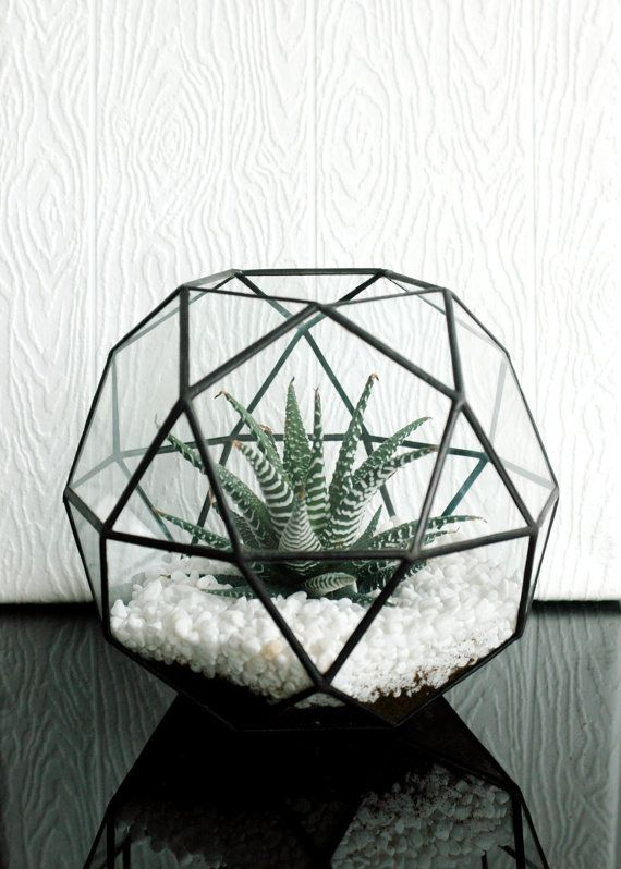in black finish - Large Geometric Glass Terrarium / Icosidodecahedron / Globe Terrarium / Handmade Glass Planter / Stained Glass Terrarium