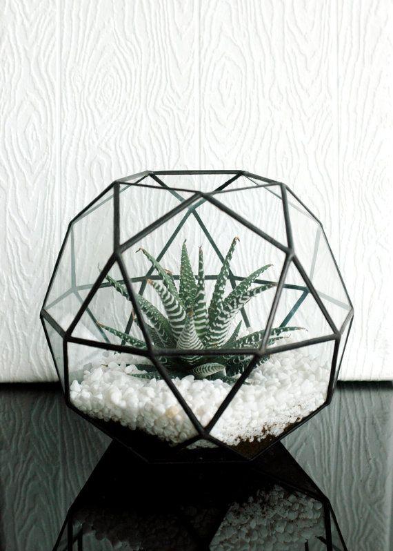 Terrarium en verre géométriques grande / icosidodécaèdre / Globe Terrarium / à la main verre planteur / teinté Terrarium en verre                                                                                                                                                                                 Plus