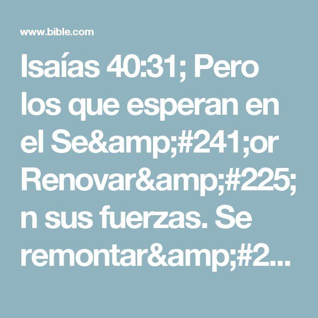 Isaías 40:31; Pero los que esperan en el Señor Renovarán sus fuerzas. Se remontarán con alas como las águilas, Correrán y no se cansarán, Caminarán y no se fatigarán.