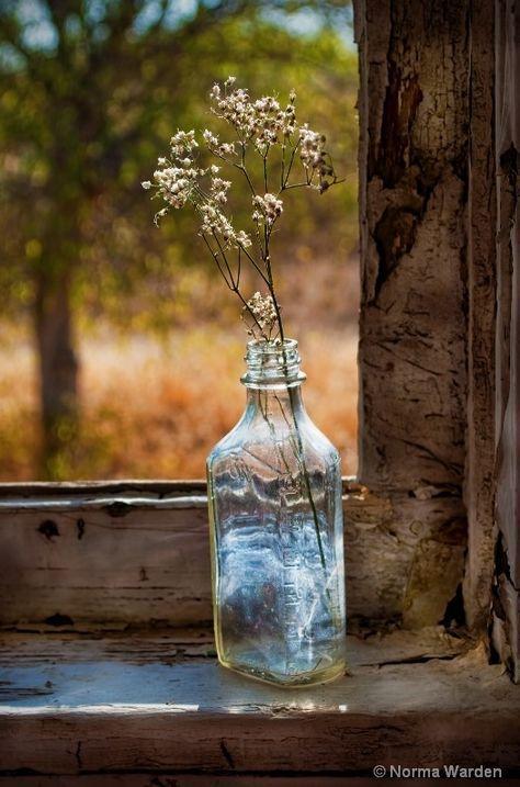 Love! Want! Need!                                                                        www.taramtominaga.com  Tara Tominaga | Art | Photography | Aesthetic