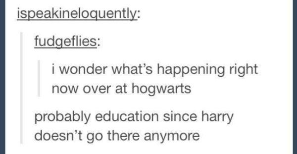 33 Harry Potter Jokes Even Muggles Will Appreciate Harry Potter Jokes Harry Potter Puns Harry Potter Memes