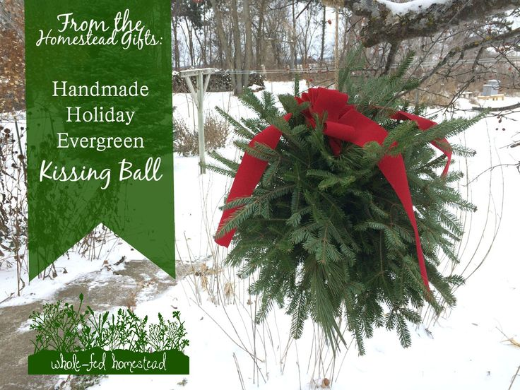 Detailed instructions on how to make an evergreen pine and fir Kissing Ball Christmas greenery decoration. A unique and inexpensive homemade gift!