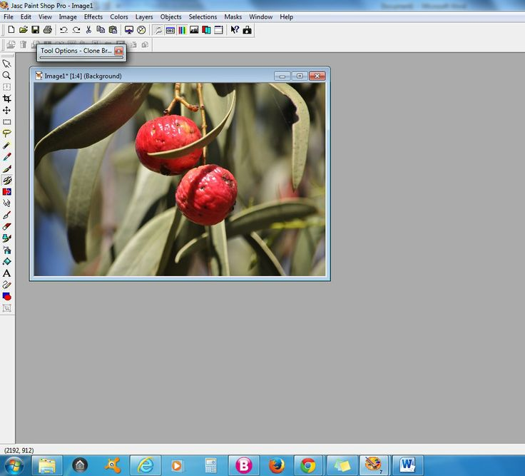 Photo Editing - Adding a copy of object - InfoBarrel Images