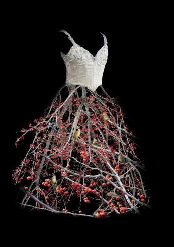 Berry Dress, 2009, Artist - Todd Murphy