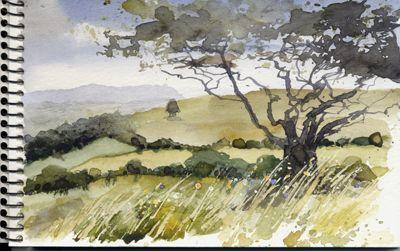 Cleeve Hill, Cheltenham. Watercolour, Kathy Lewis