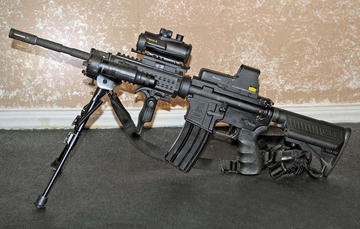 Custom Bushmaster Ar 15