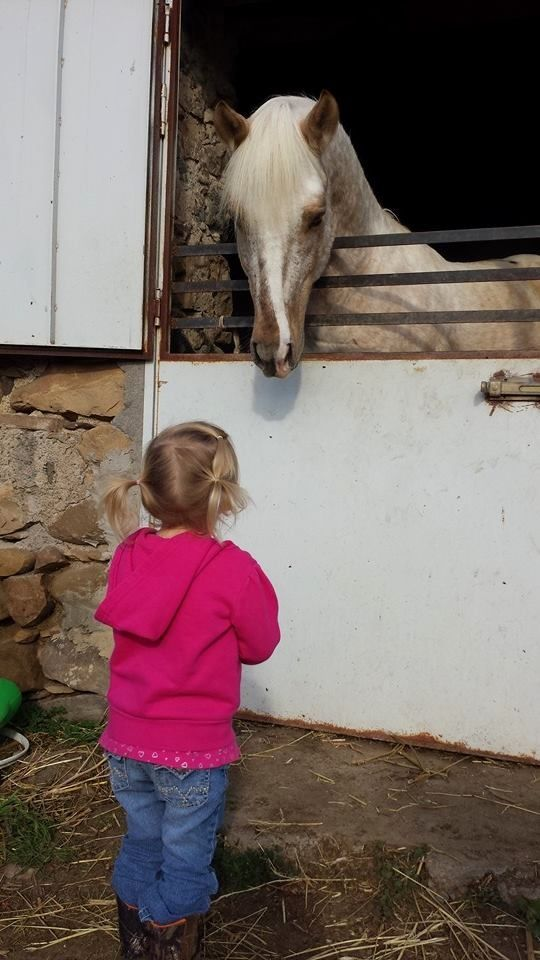 American Girl Visiting European Stallion Near Sigonella