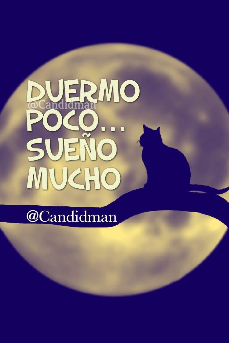 #LunaLlena #Gato #Candidman