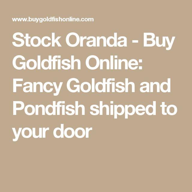 Stock Oranda - Buy Goldfish Online: Fancy Goldfish and Pondfish shipped to your door