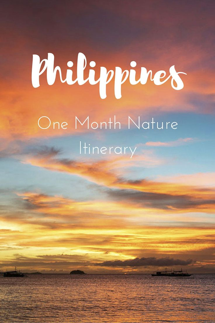 1 Month Itinerary in the Philippines, featuring Bohol, Siquijor, Malapascua, Apo Island, Dauin and Danjugan Island! Plus great hotels in Manila and Mactan/Cebu!