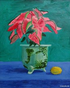 Hockney, David (88) - pointsetta plant painting