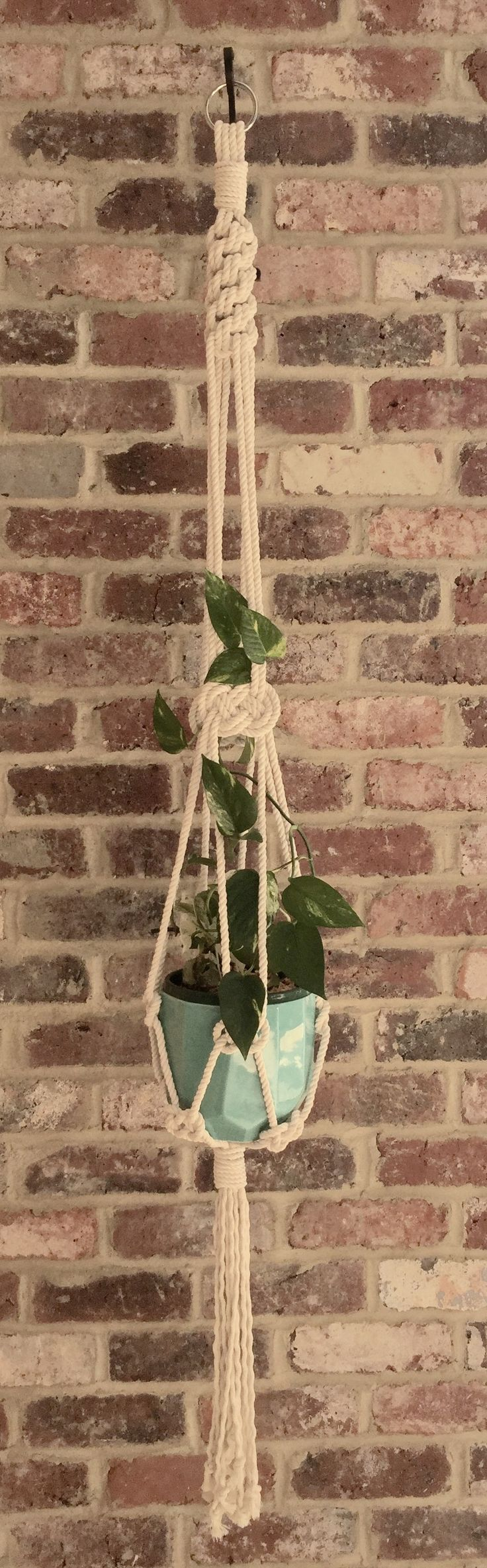 Medium Macrame Plant Hanger 8mm Natural Cotton twisted rope