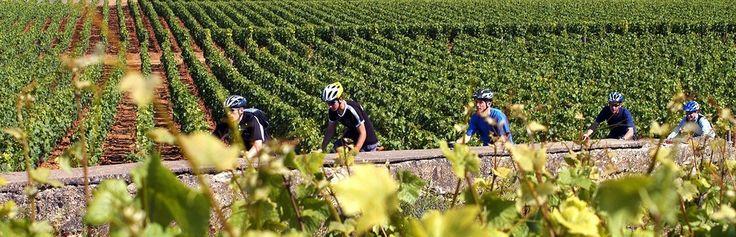 Vélo Gourmand organise des voyages à vélo pour tous, à la découverte de la culture et de la gastronomie des régions de France. Nouvelle agence de voyage en ligne, Vélo Gourmand est née de la passion et de l'expérience...