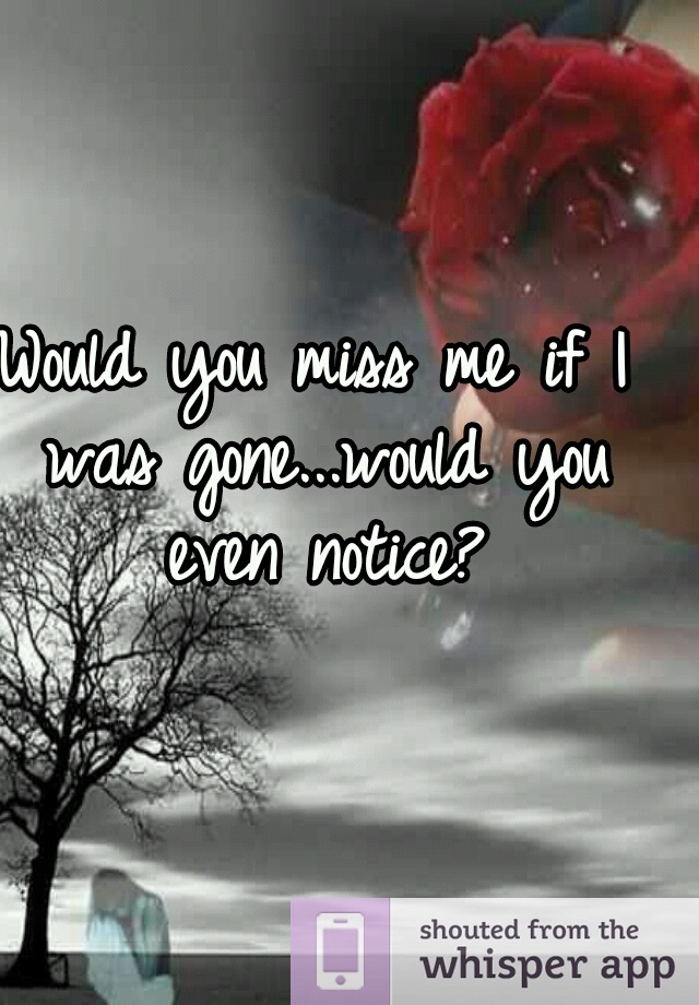 Would You Miss Me If I Was Gone...would You Even Notice?