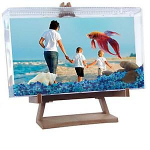 42 best betta fish tank ideas images on pinterest betta for Self cleaning fish tank walmart
