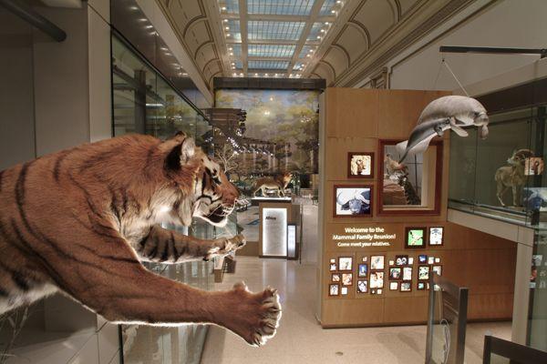 Overview of exhibit
