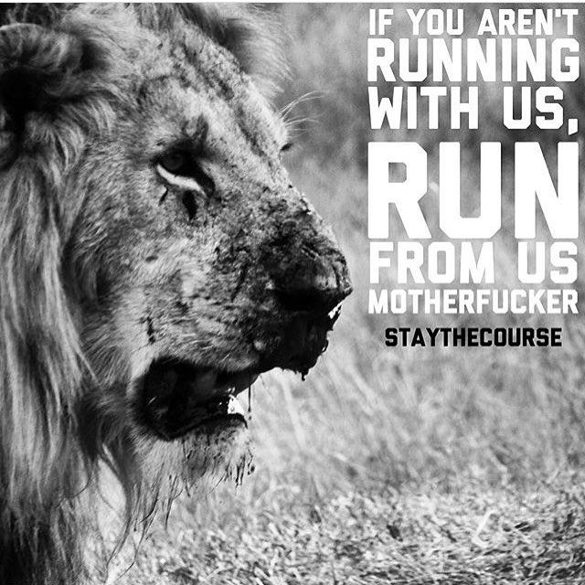 There will be doubters, haters, liars, and dudes who copy everything you do. Fuck them all. Don't even think about them. Give them zero energy. Be original as you can fucking be, and work as hard as you can. Losers will fizzle out the fastest. Be in this shit for the long haul. Trample the weak, and hurdle the dead on your way to glory. #staythecourse
