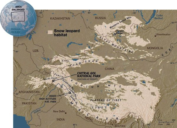 A map of the snow leopard's habitat covering a million square miles. Map copyright National Geographic.