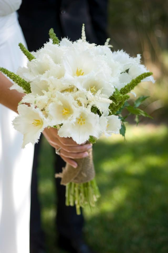 Parrot Tulips for a Bridal Bouquet