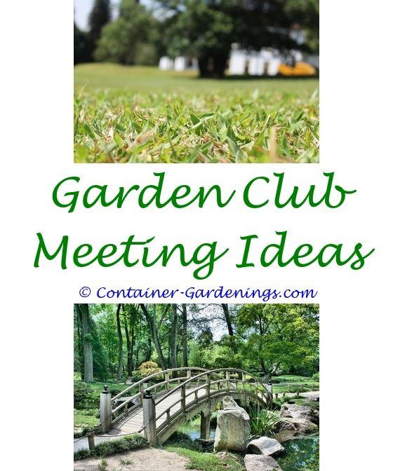 Garden Ideas Zone 6: Best 25+ Cheap Garden Ideas Ideas On Pinterest