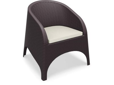 Aruba Tub Chair With Cushion