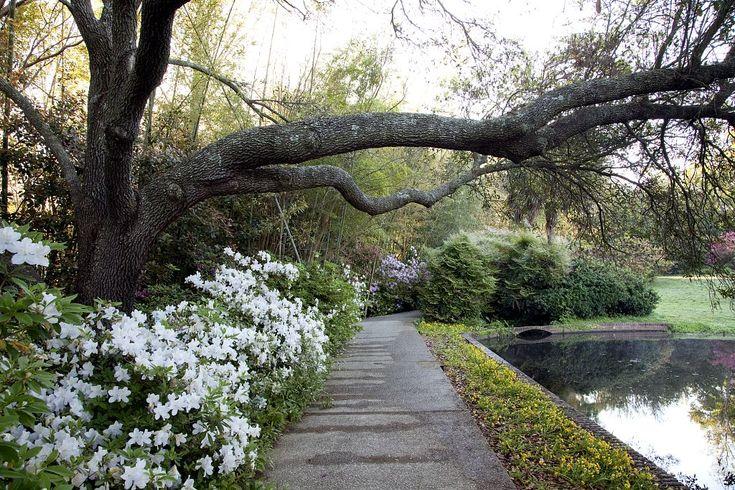1000 Images About BELLINGRATH GARDENS On Pinterest Gardens Garden Fountai