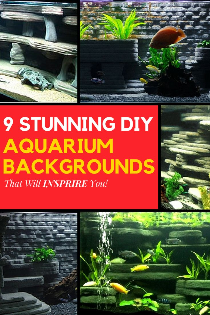Fish don't need fancy custom backgrounds right?Maybe not, but I do and they look pretty cool as well.Below are 9 Stunning DIY Aquarium Backgrounds found