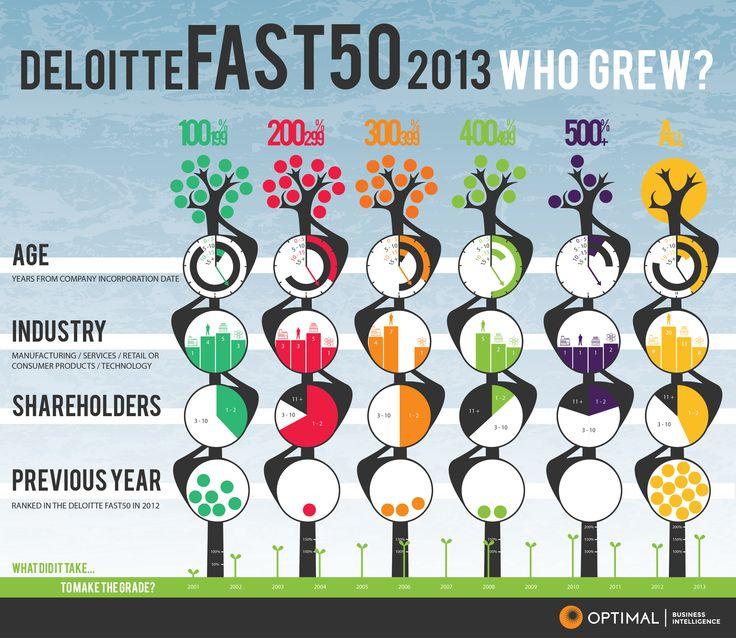 Deloitte Fast50 2013 #segmentation #infographic #NewZealand
